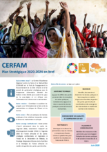 CERFAM Strategic Plan 2020-2024
