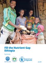 Fill the Nutrient Gap - Ethiopia Summary Report – (English)
