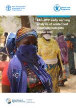 FAO-WFP Early Warning Analysis of Acute Food Insecurity Hotspots - November 2020