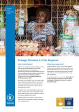 2019 - Malawi Factsheets