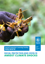 Social Protection and COVID-19 Amidst Climate Shocks - 2020