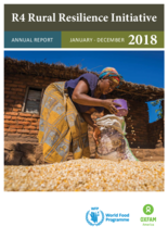 2018 - R4 Rural Resilience Initiative Annual Report