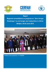 "Regional consultations on progress on ""Zero Hunger Roadmaps"" to end hunger and malnutrition in Africa"