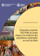 Mali, Resilience Activity in Northern Mali: FAO/WFP joint evaluation