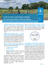 Food security and climate change, the pressing reality of Mozambique