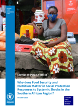 COVID-19 Policy Brief: Why does Food Security and Nutrition Matter in Social Protection Responses to Systemic Shocks in the Southern African Region? - October 2020