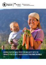Scoping Study on Social Protection and Safety Nets for Enhanced Food Security and Nutrition in the Kyrgyz Republic