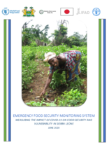 Emergency Food Security Monitoring System: Measuring the Impact of Covid-19 on Food Security and Vulnerability in Sierra Leone - June 2020.