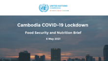 Cambodia COVID-19 Lockdown: Food Security and Nutrition Brief - 2021