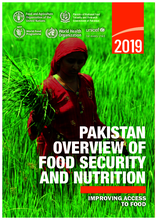 PAKISTAN OVERVIEW OF FOOD SECURITY AND NUTRITION - 2019