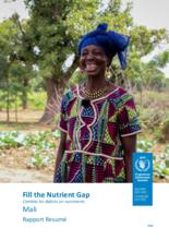 Fill the Nutrient Gap - Mali Summary Report