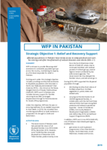 2018/2019 Update on Strategic Objectives in Pakistan