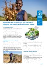 2021 – Watershed Management Factsheet – WFP Malawi, July 2021