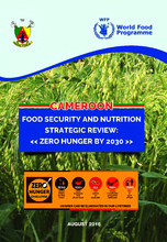2016 - Food Security and Nutrition Strategic Review - Cameroon