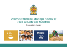 National Strategic Review of Food Security and Nutrition