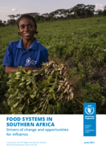 Food systems in Southern Africa : Drivers of change and opportunities for influence