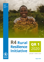 R4 Rural Resilience Initiative Quarterly Report Jan- Mar 2020