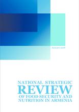 Armenia Strategic Review