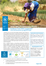 Does Climate Insurance Work? Evidence from WFP-Supported Microinsurance Programmes - 2021