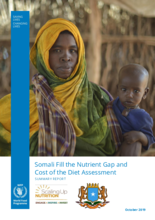 Fill the Nutrient Gap and Cost of the Diet Assessment - Somalia