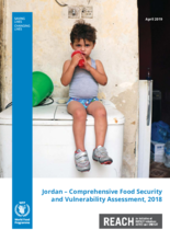 WFP Jordan - Comprehensive Food Security and Vulnerability Assessment 2018