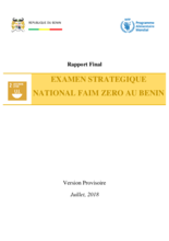 Benin Strategic Review