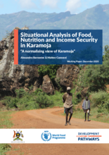 Situation Analysis of Food, Nutrition and Income Insecurity in Karamoja - 2020