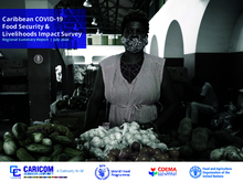 Caribbean COVID-19 - Food Security and Livelihoods Impact Survey - Round 2