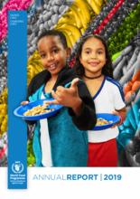 WFP CoE Brazil - Annual Report 2019