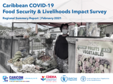 Caribbean COVID-19 Food Security and Livelihoods Impact Survey - Round 3 - February 2021