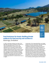FFA: Building climate resilience for food security and nutrition in  Masvingo, Zimbabwe - 2020