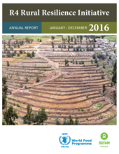 R4 Rural Resilience Initiative Annual Report 2016