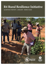 R4 Rural Resilience Initiative - Quarterly Report Jan-Mar 2019