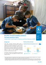 Benefits of mixed modality assistance for food security in Syria