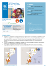 Situation Report - Mozambique
