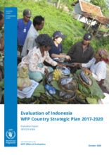Evaluation of Indonesia WFP Country Strategic Plan 2017-2020