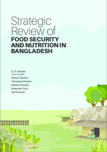 2016 - Strategic Review of Food Security and Nutrition in Bangladesh