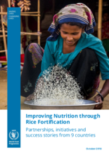 2018 - Improving nutrition through rice fortification