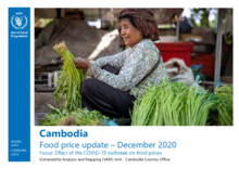 Cambodia - Food price update –December 2020