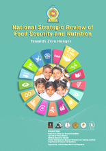 2017 - Strategic Review of Food Security and Nutrition in Sri Lanka