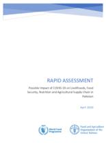 Rapid Assessment - Possible Impact of the Novel Coronavirus Pandemic (COVID-19)