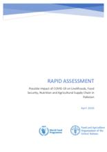 Rapid Assessment - Possible Impact of the Novel Coronavirus Pandemic (COVID-19)