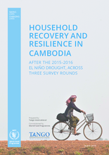 Household recovery and resilience in Cambodia