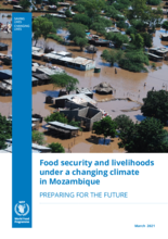 Food security and livelihoods under a changing climate in Mozambique - 2021