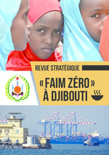 2018 -  Djibouti Country Strategic Review
