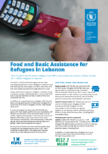 WFP Lebanon - Food and Basic Assistance for Refugees