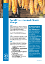 Social Protection and Climate Change