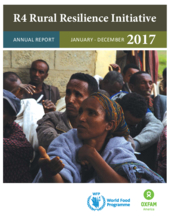 2017 -  R4 Rural Resilience Initiative Annual Report