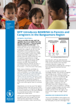 WFP Philippines Introduces BAMBINA to Parents and Caregivers in the Bangsamoro Region - 2021