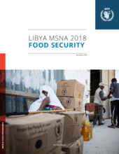 Libya - Food Security: MSNA 2018